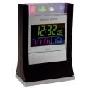 25011 Desktop weather station